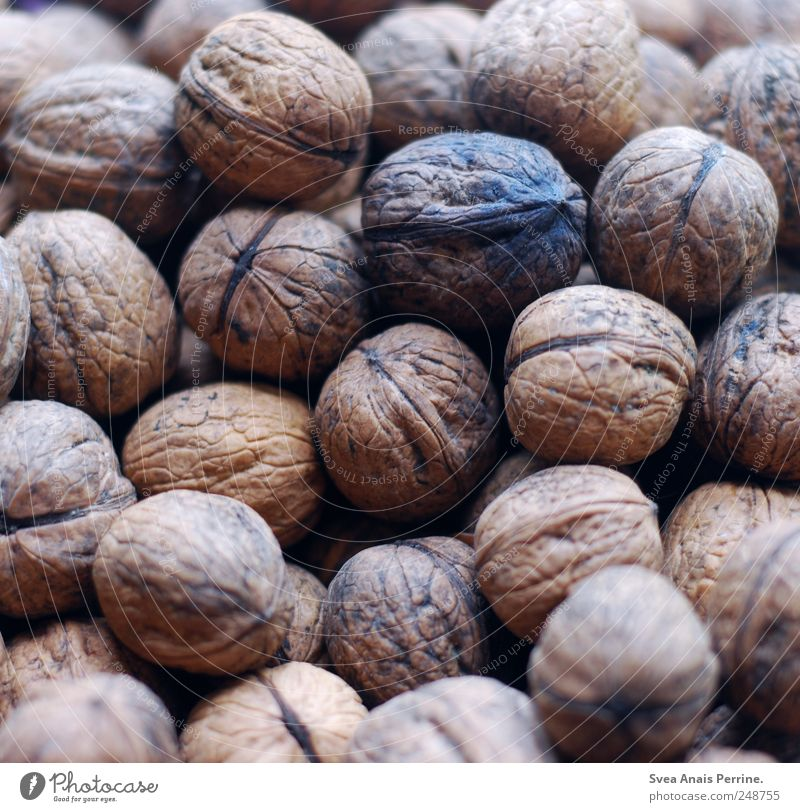 walnut. Food Nut Walnut Vitamin Nutrition Natural Round Colour photo Subdued colour Deserted