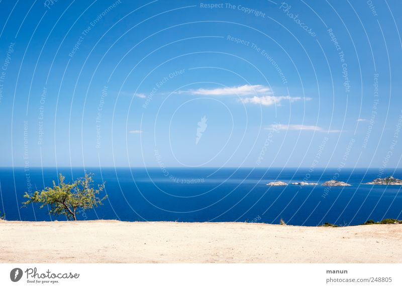 far vision Nature Landscape Earth Sand Water Sky Tree Bushes Rock Coast Reef Ocean Sardinia Authentic Natural Blue Wanderlust Vacation & Travel Colour photo