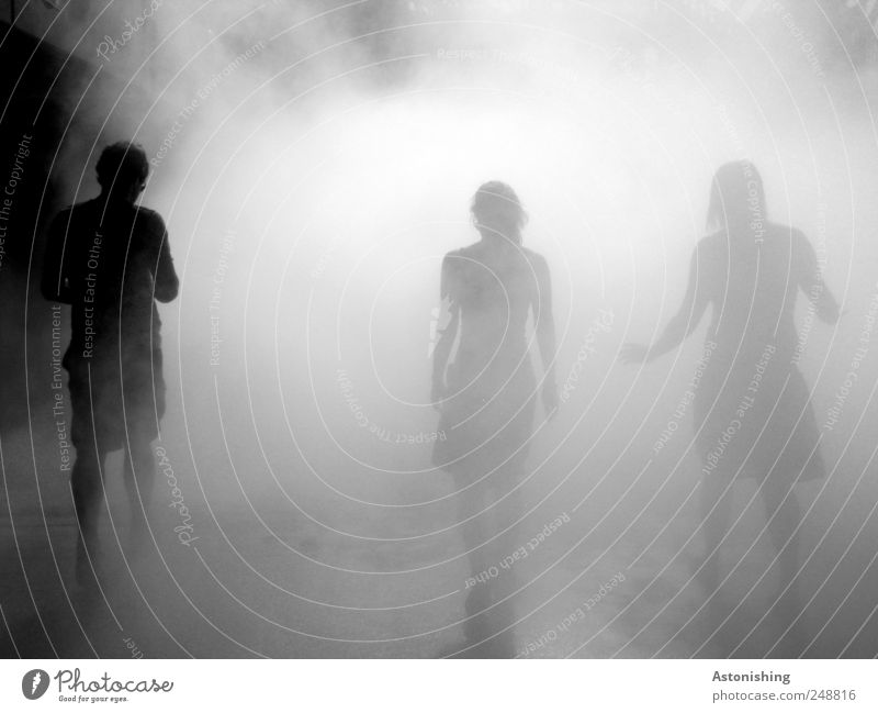 into the fog Human being Masculine Friendship Head Back Arm Legs 3 Group Fog Linz (Danube) House (Residential Structure) Going To enjoy Threat Gloomy Gray Black