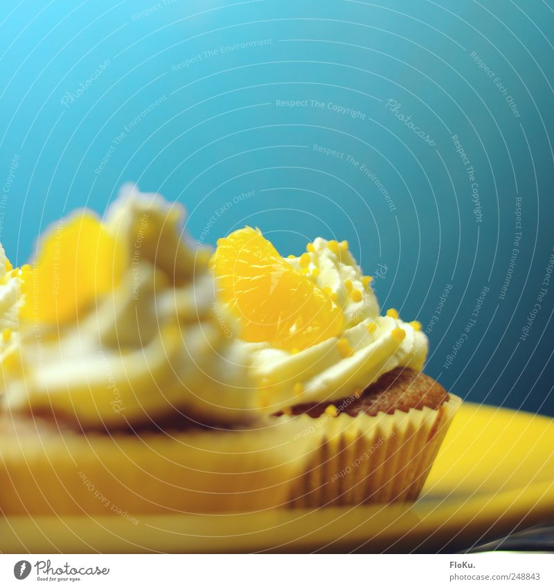 tart Food Orange Cake Dessert Candy Nutrition Fresh Delicious Sweet Blue Yellow Muffin Tangerine Cream Rich in calories Colour photo Close-up Deserted
