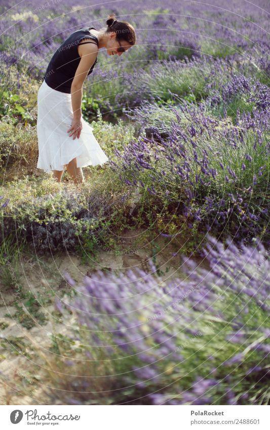 #A# In lavender Environment Nature Landscape Plant Esthetic Violet Lavender Lavender field Lavande harvest Woman Field Walking Exterior shot To go for a walk