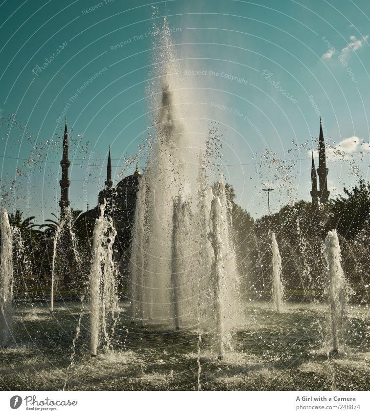 turkish beauty Summer Beautiful weather Istanbul Turkey Old town Places Manmade structures Building Architecture Mosque Water fountain Well Minaret Tower