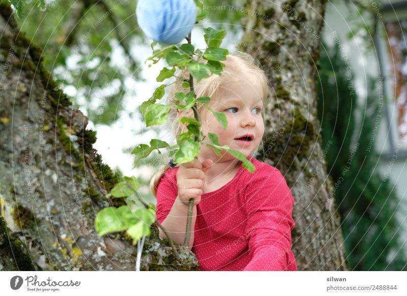 Girl climbs a tree Feminine Child Infancy 1 Human being 1 - 3 years Toddler Tree Discover Catch Feasts & Celebrations Playing Sports Blonde Brash Free