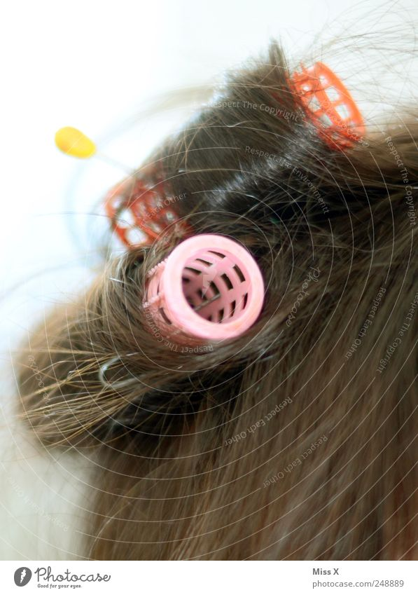 Beautiful Hair and hairstyles Pink Curl Brunette Accessory Hair curlers Prickle