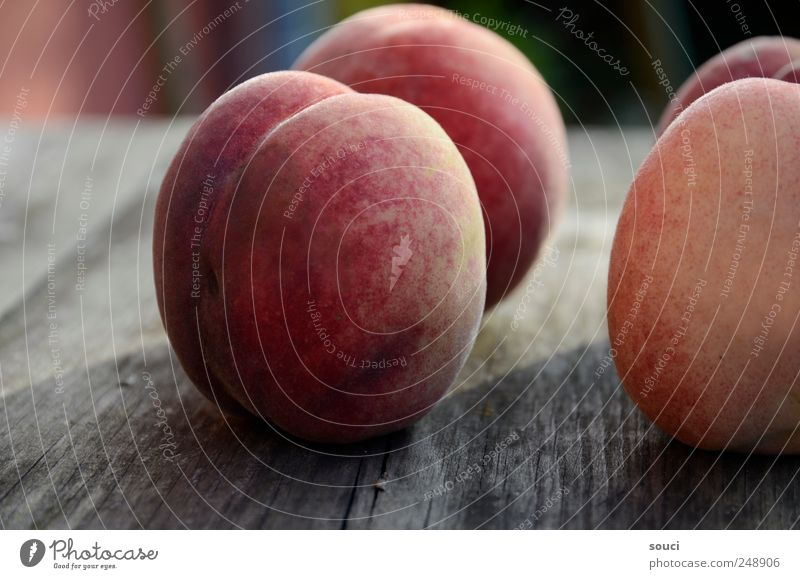 """Four Fruit """"Peach Peaches"""" Nutrition Vegetarian diet Garden Table Nature Summer Tree fruits Harvest Village Wood Brown Yellow Red Anticipation 4 Velvety"""