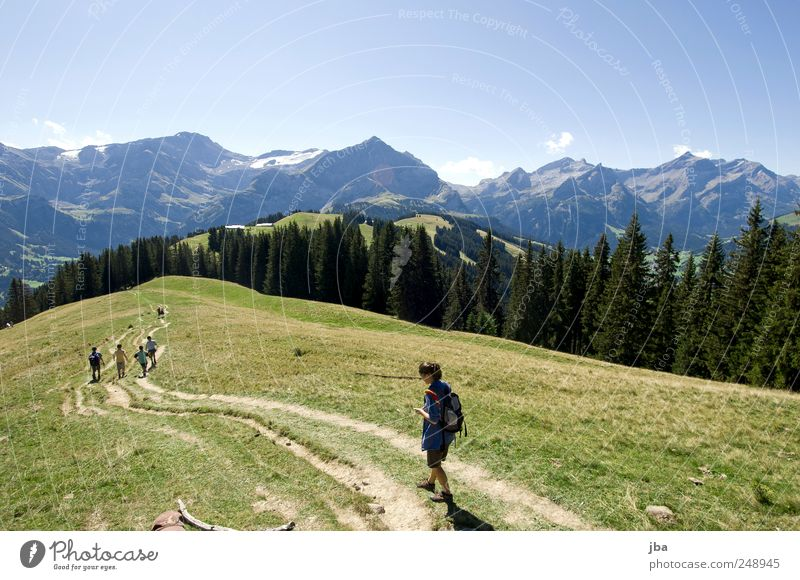 hiking in the mountains Harmonious Relaxation Leisure and hobbies Tourism Freedom Summer Mountain Hiking Human being Friendship Group Nature Landscape Sky