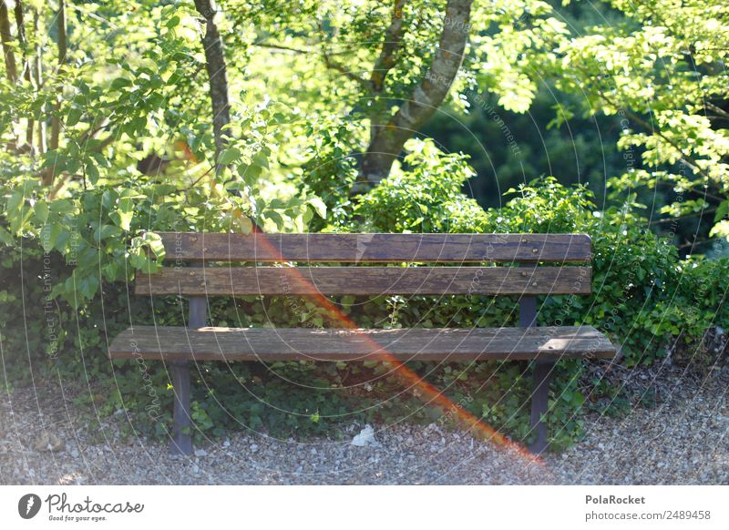 Nature Plant Green Landscape Environment Garden Park Esthetic Idyll Beautiful weather Empty Climate Bench Seating