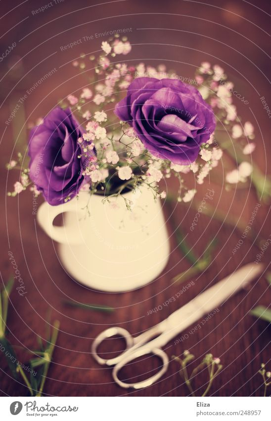 Purple. Decoration Flower Blossom Beautiful Table Wood Floristry Scissors Vase Cut Baby's-breath Vintage Moody Embellish Kitsch Bouquet Wooden table