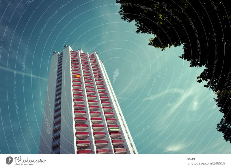 Sky Blue Tree Clouds House (Residential Structure) Environment Window Architecture Building Weather Facade Tall Modern High-rise Beautiful weather Balcony
