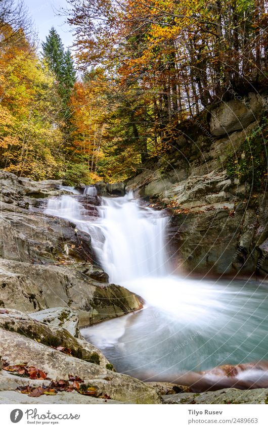 Waterfall of the Cube, Selva de Irati, Navarra Beautiful Vacation & Travel Mountain Wallpaper Environment Nature Landscape Plant Autumn Tree Leaf Park Forest