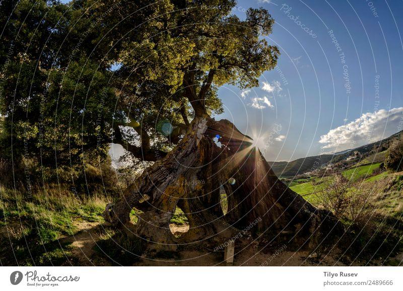 Encina de Eraul Mountain Nature Landscape Sky Meadow Village Vacation & Travel Rural Vantage point Colour photo