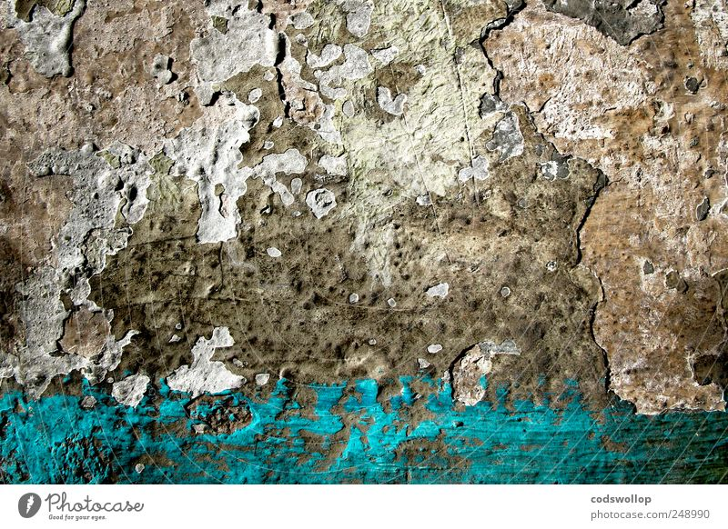 Old Blue Wall (building) Gray Wall (barrier) Esthetic Transience Decline Chaos Plaster Painted