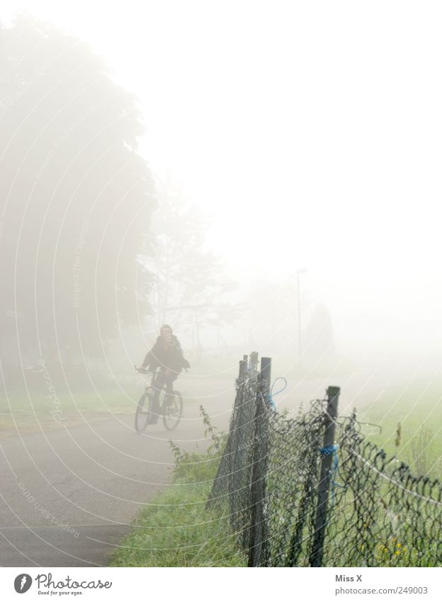cyclists Human being 1 Nature Autumn Bad weather Fog Meadow Street Lanes & trails Driving Gloomy Gray Fence Bicycle Cycle path Road safety Shroud of fog