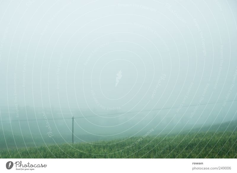 Foggy Nature Landscape Plant Water Sky Clouds Autumn Bad weather Meadow Hill Mountain Wet Gloomy Green Sadness Loneliness Environment Grass Electricity pylon
