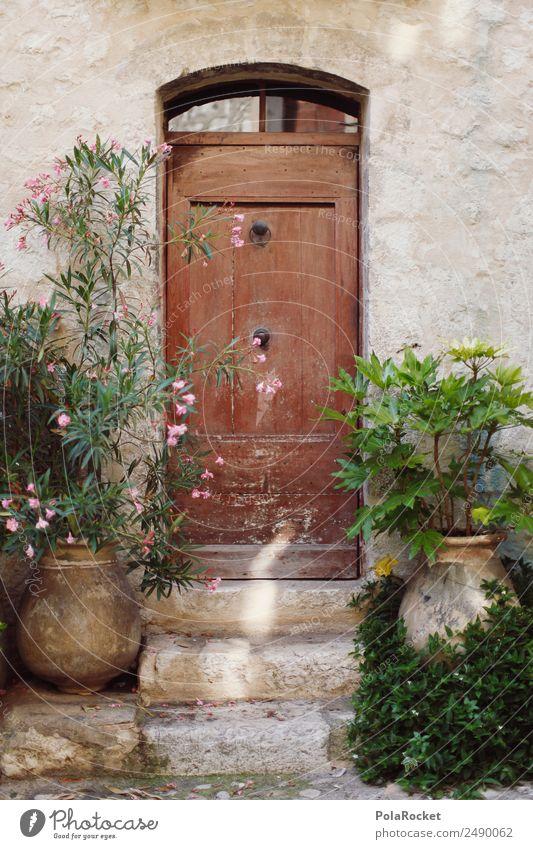 #A# Back door Environment Beautiful weather Garden Esthetic Door Wooden door Door lock Doorframe Knocker Plant Mediterranean France Provence Colour photo