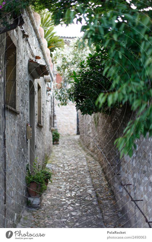Green Art Esthetic France Mediterranean Hide Alley Narrow Work of art Dreamily Vacation photo Provence