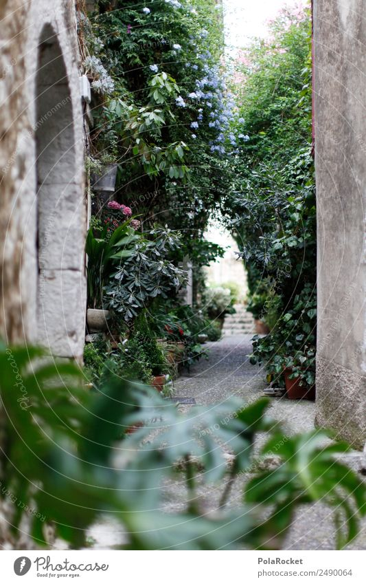 #A# GSSE Art Work of art Esthetic Alley Mediterranean Street Overgrown Backyard Idyll France Provence Small Town Romance Hide Old town Dreamily Shadow Garden