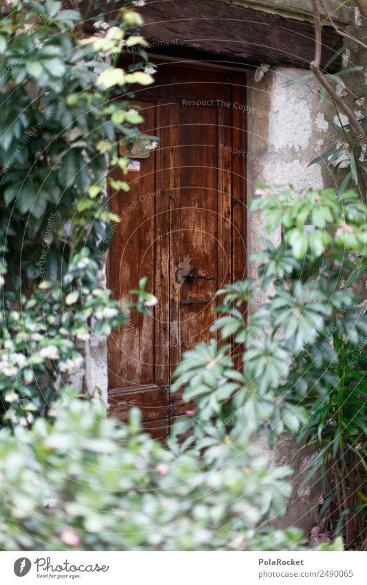 #A# Door growth Art Contentment Front door Garden French Hide Treasure Mystic France Provence Wooden door Colour photo Multicoloured Exterior shot Detail