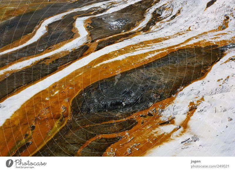 heat flow Environment Nature Landscape Elements Fire Water Source River Stream Flow Degrees Celsius flow system Bacterium Elegant Exotic Fantastic Fluid Brown