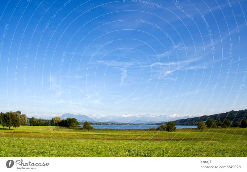 Field, Lake, Alps Nature Landscape Cloudless sky Summer Beautiful weather Meadow Lakeside Natural Blue Green Freedom Far-off places Switzerland Colour photo
