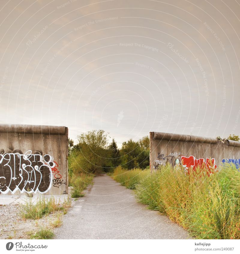 Sky Nature Plant Summer Animal Meadow Wall (building) Environment Landscape Graffiti Lanes & trails Wall (barrier) Field Growth Monument Border