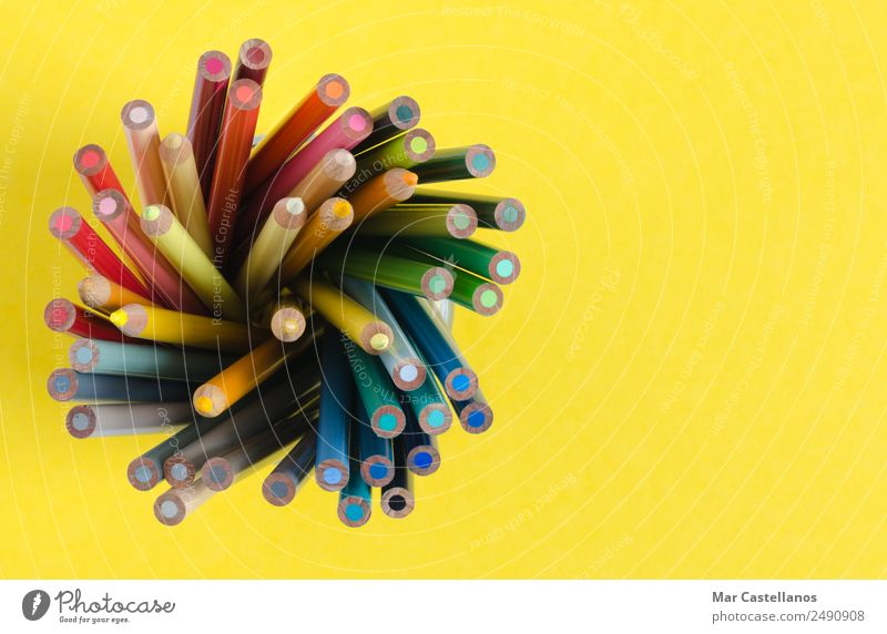 Color pencils in vertical on yellow background Blue Colour Green White Red Yellow Wood Art School Exceptional Pink Office Leisure and hobbies Bright Creativity