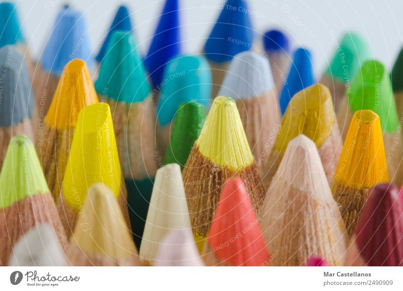 Closeup view of colored pencils Blue Colour Green White Red Yellow Art School Work and employment Design Office Leisure and hobbies Academic studies Simple