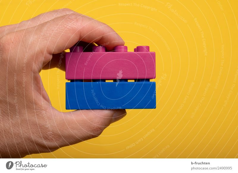 Assembling two building blocks Leisure and hobbies Team Hand Toys Plastic To hold on Together Blue Pink Love Loyalty Inspiration Teamwork Attachment Brick
