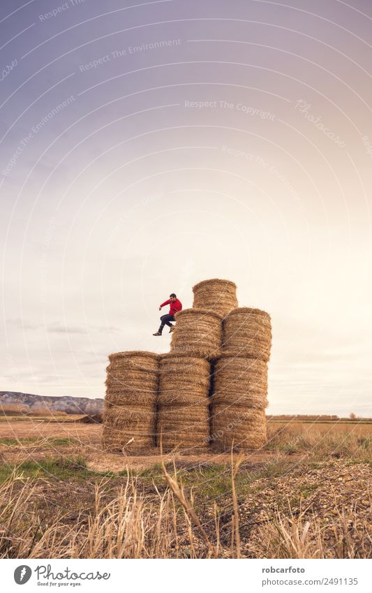 man over bales of straw Joy Happy Playing Summer Sun Human being Man Adults Nature Landscape Sky Grass Meadow Jump Natural Yellow Gold field Hay young Rural