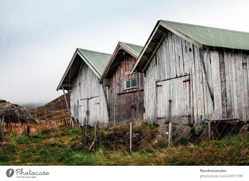 Old huts in the rain Trip Hiking Nature Landscape Elements Summer Autumn Climate Weather Bad weather Rain Grass Meadow Mountain Coast
