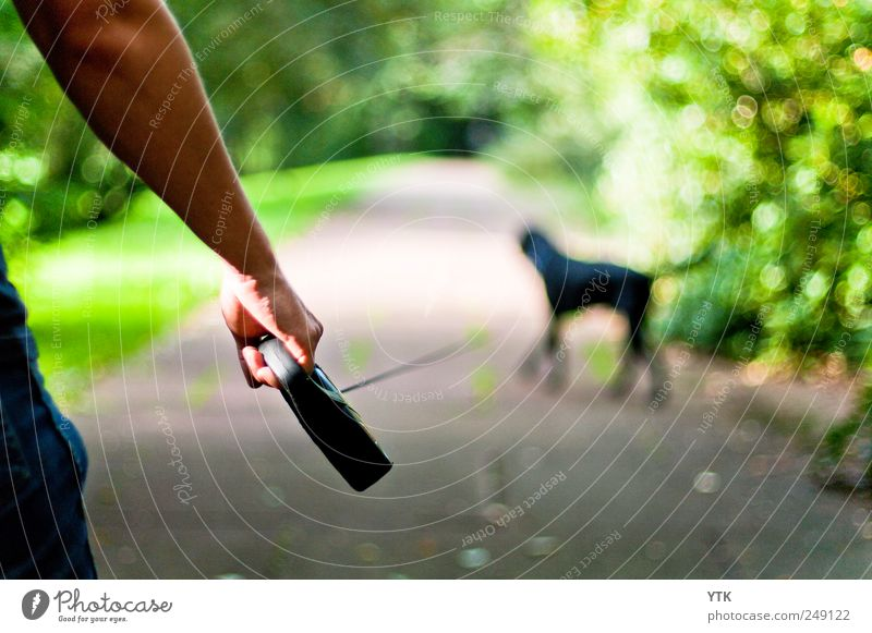 Who's going with who? Human being Masculine Man Adults Arm Hand 1 Animal Pet Dog Going Movement Relationship Attachment Blur Walk the dog Black Lanes & trails