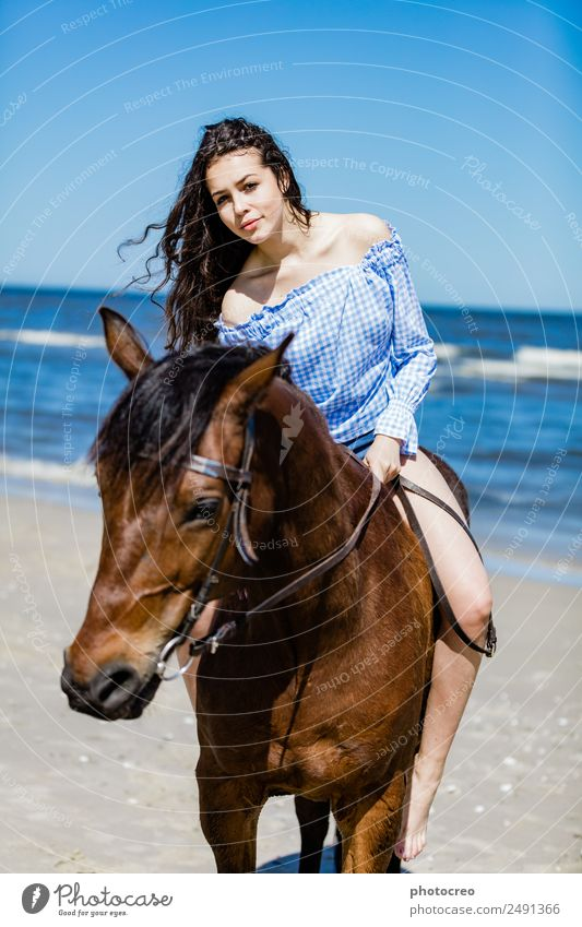 Young attractive girl sitting on a bay horse by the sea Vacation & Travel Summer Beach Ocean Human being Young woman Youth (Young adults) Woman Adults 1 Nature
