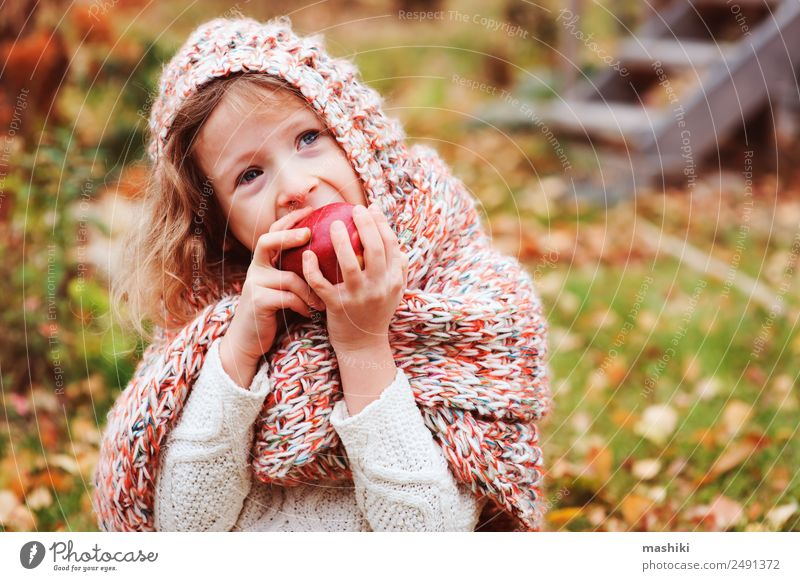 happy funny kid girl eating fresh apple in autumn Fruit Apple Lifestyle Joy Playing Garden Child Infancy Nature Autumn Warmth Leaf Forest Scarf Smiling
