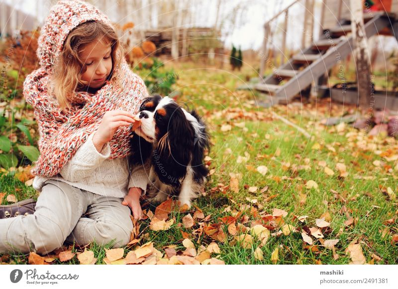 happy kid girl playing with her dog in autumn Lifestyle Joy Happy Playing Garden Child Family & Relations Friendship Infancy Nature Autumn Warmth Leaf Forest