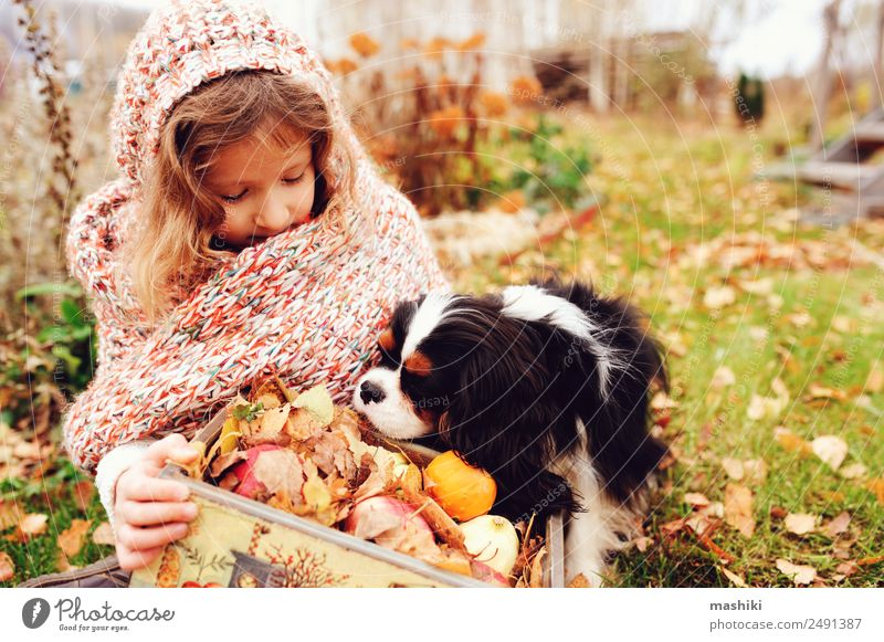 happy kid girl with basket of apples playing with her dog Apple Lifestyle Joy Playing Child Family & Relations Friendship Infancy Nature Autumn Scarf Pet Dog