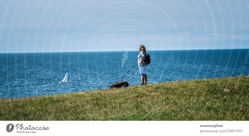 Woman Human being Sky Nature Vacation & Travel Dog Summer Blue Ocean Animal Far-off places Adults Coast Feminine Grass Trip