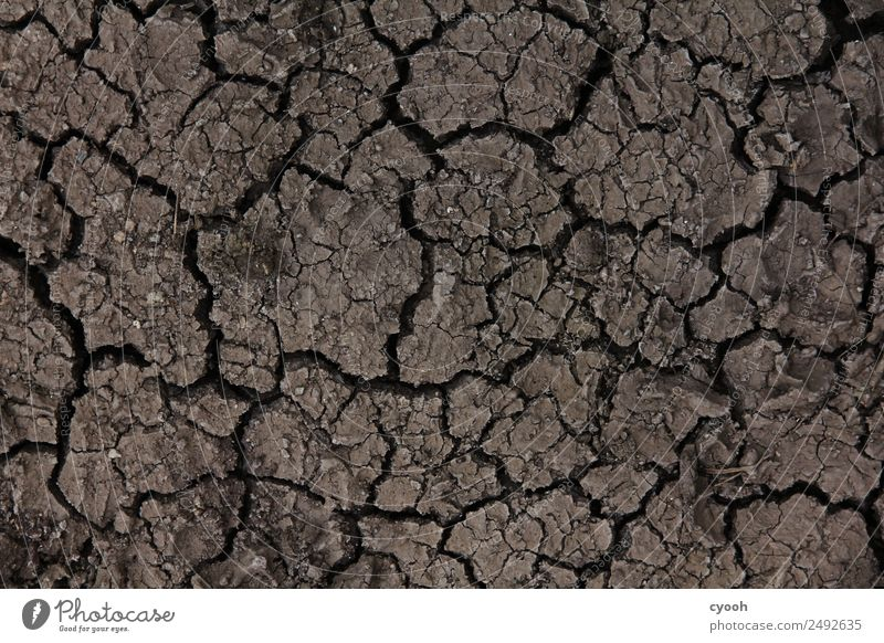 Summer Time Brown Fear Earth Future Transience Climate Threat Dry Hot Decline Appetite Crack & Rip & Tear Sustainability Distress