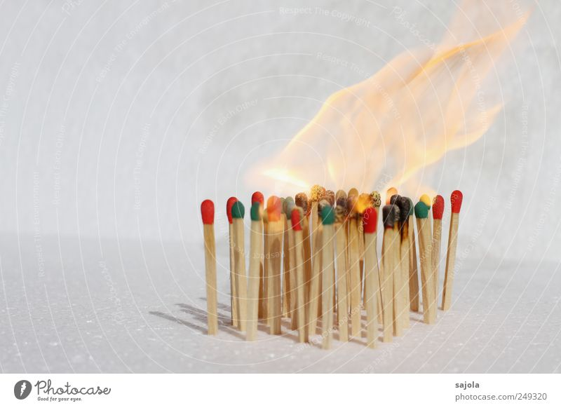 Green White Red Wood Together Blaze Fire Multiple Stand Team Exceptional Hot Crowd of people Burn Society Attachment