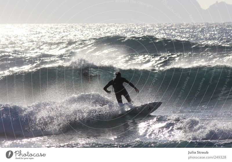 Back Surfboard Surfing Waves Human being Man Adults 1 18 - 30 years Youth (Young adults) Water Beautiful weather Ocean Atlantic Ocean Athletic Blue Green Black