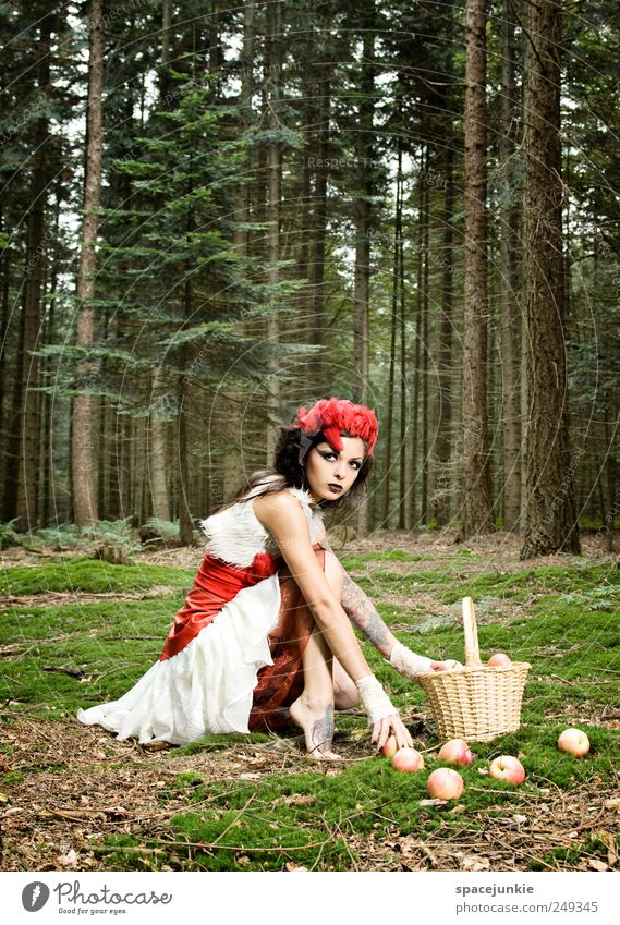fairytale Human being Feminine Young woman Youth (Young adults) 1 18 - 30 years Adults Environment Nature Landscape Plant Tree Grass Bushes Moss Observe Touch