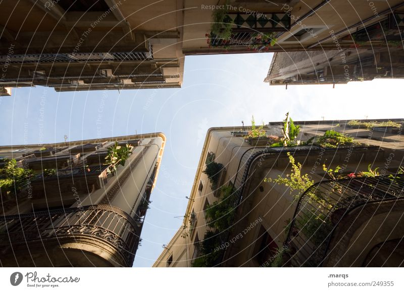 popular song Lifestyle Style City trip Living or residing Cloudless sky Foliage plant Barcelona Spain House (Residential Structure) Facade Balcony Dark Tall