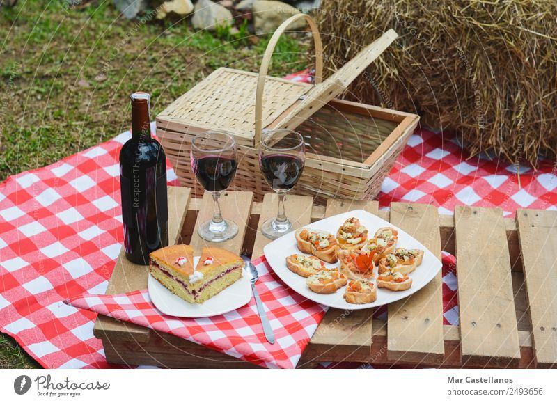Outdoor picnic with wine on checkered tablecloth and basket. Bread Bottle Spoon Relaxation Summer Table Kitchen Grass Meadow Transport Clothing Write Carrying