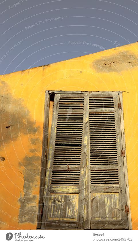 Yellow facade-Saint Louis du Senegal Child Man Old Town Tree House (Residential Structure) Window Street Adults Architecture Wall (building) Boy (child) Art
