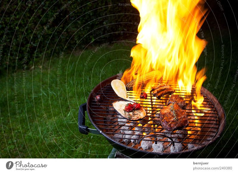 fire&flame Food Meat Vegetable To enjoy Hot Bright Yellow Barbecue (apparatus) Flame Fire Grill Steak Sausage Coal Tomato Zucchini Aubergine Rosemary