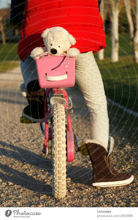 girl riding a bicycle with teddy bear in the basket Joy Life Cycling Girl 3 - 8 years Child Infancy Spring Autumn Winter Park Toys Doll Teddy bear To enjoy