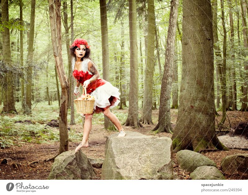Human being Youth (Young adults) Tree Plant Red Leaf Forest Feminine Landscape Adults Fashion Fear Rock Walking Exceptional Observe
