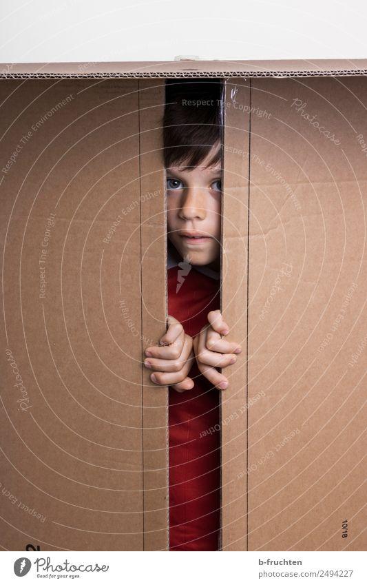 Find me! Schoolchild Boy (child) Infancy Face 8 - 13 years Child Toys Packaging Package Utilize Looking Brown Joy Hide Confine Fingers Effortless Undo Curiosity