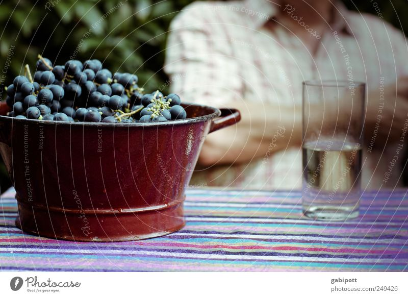 Blue Relaxation Natural Healthy Brown Fruit Glass Sit To enjoy Beverage Joie de vivre (Vitality) Drinking Delicious Serene Wine Well-being