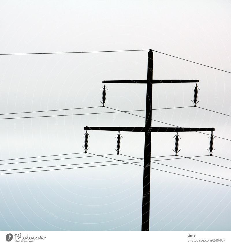 Sky Together Elegant Esthetic Energy industry Electricity Technology Infinity Electricity pylon Transmission lines Parallel High voltage power line Insulator Electrical circuit