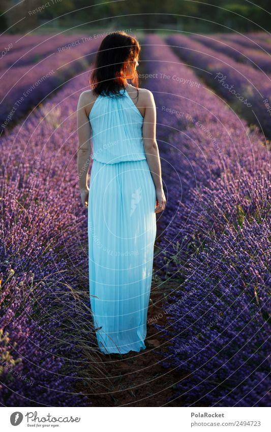 #A# Lavender walk 1 Human being Art Esthetic Lavender field Lavande harvest Violet France Provence Dress Woman Model Manikin Idyll Fantastic Wanderlust Trip